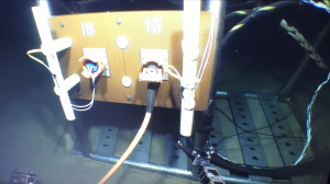 The platform is being plugged by the ROV (May 2018)