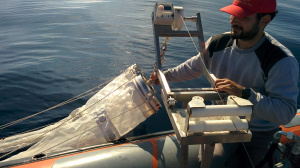 Plankton Net sampling (Nov. 2015)