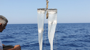 Plankton Net sampling from R/V Philia (Sep. 2016)