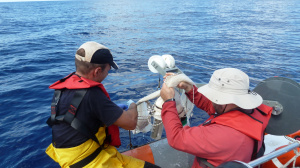 Plankton net's preparation for sampling (Sep. 2012)